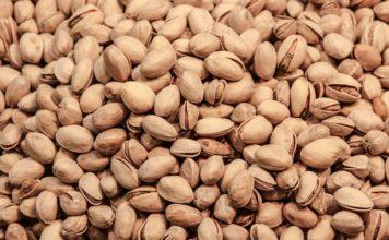 Jak rosną pistacje?
